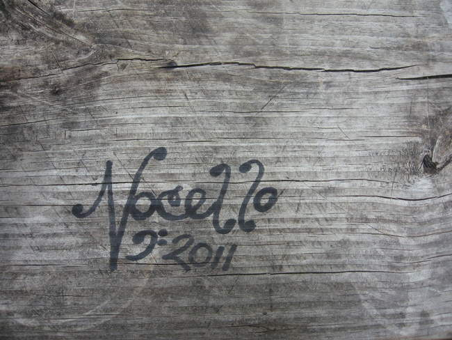 Nocello on the picnic table