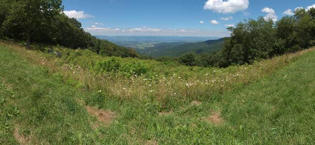 Fishers Gap Overlook (3070ft, E)